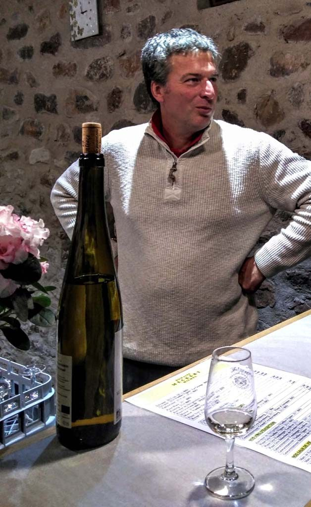 Monsieur Meckert bei einer Weinprobe, Heiligenstein, Klevener de Heiligenstein, Routes des Vins d´Alsace, Elsass, Mont Sainte Odile