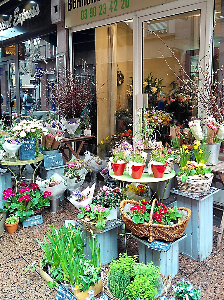 Strasbourg_Straßburg_Bernard_Deutsch_fleurs_blumen_Alsace_Elsass
