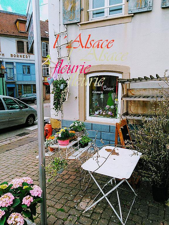 Blumenladen in Wasselonne