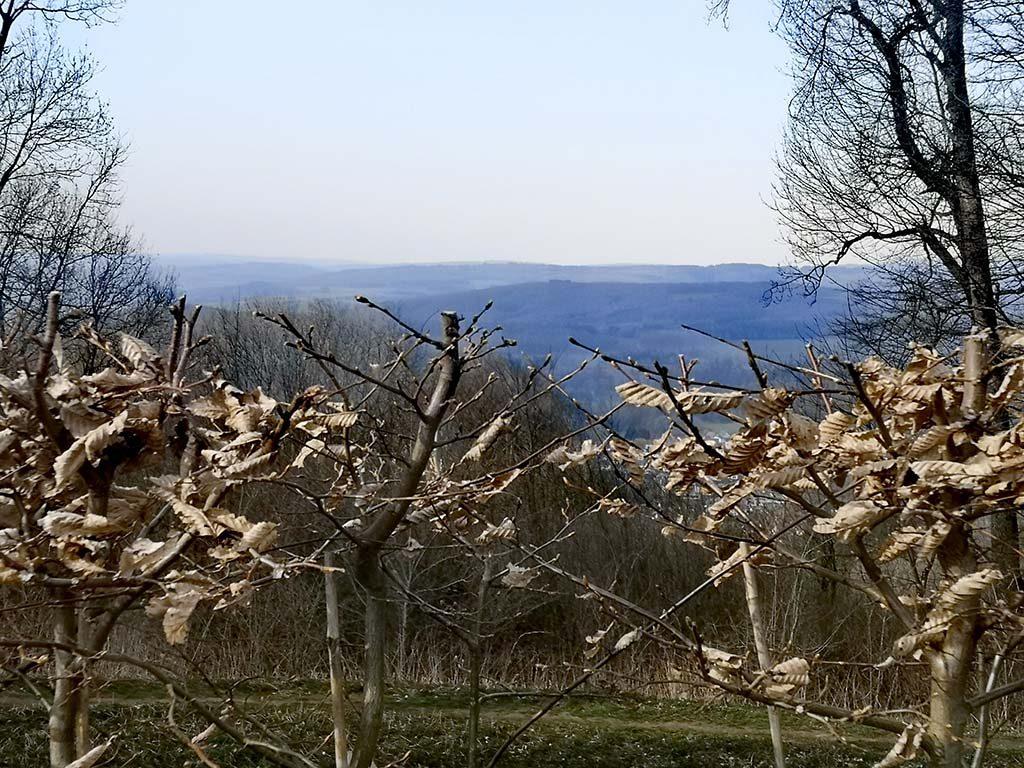 Schaumbergturm Aussicht Wandern