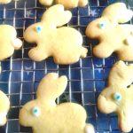 Hasen Kekse backen